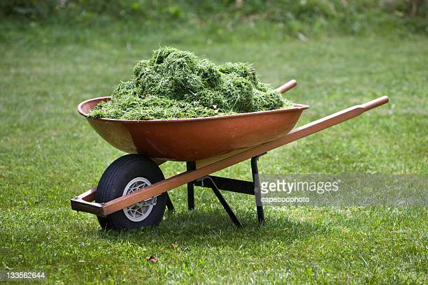 red wheelbarrow with grass clippings - wheelbarrow stock photos and pictures