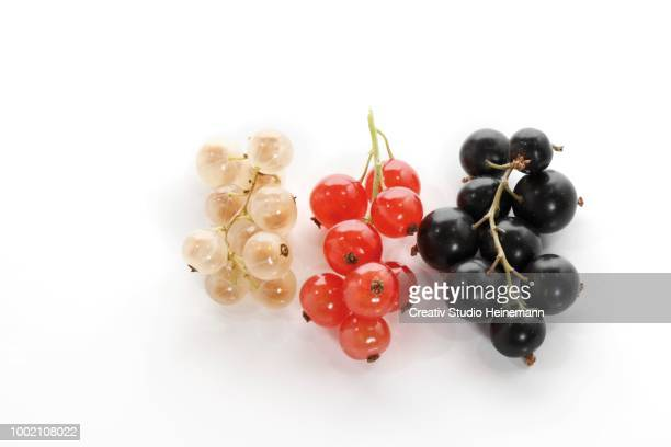 red, white and black currants - cassis stock pictures, royalty-free photos & images
