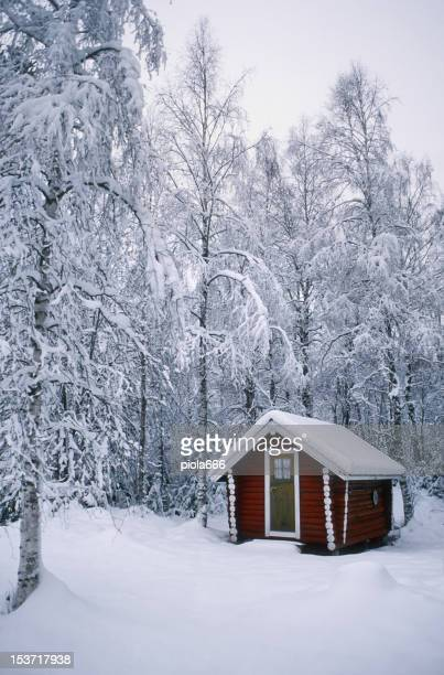 Red Wooden House in the Snow