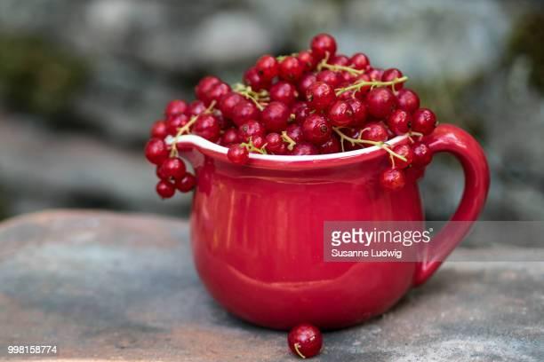 redcurrant (1)