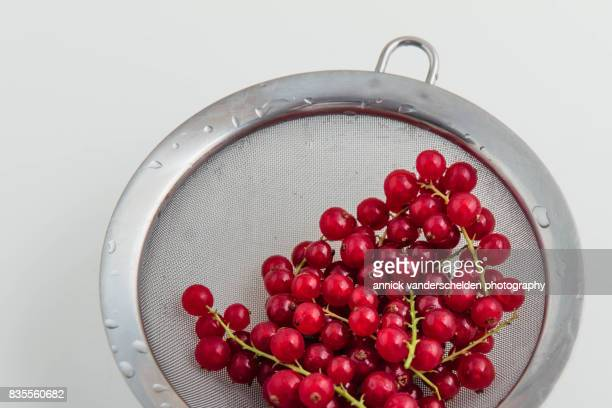 Redcurrants.