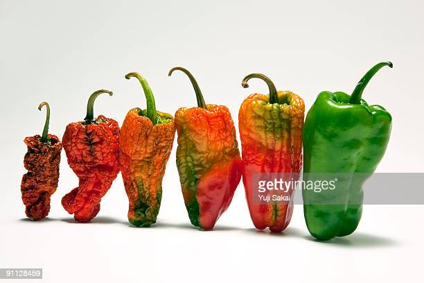 red&green peppers close up - rot stock photos and pictures