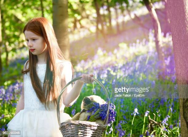 Redhead Girl Holding Basket In Forest