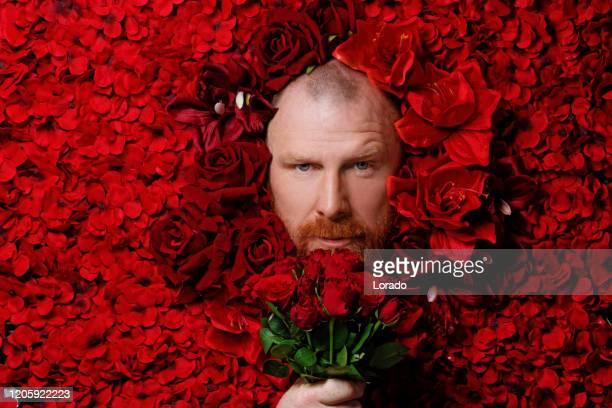 homem ruiva em uma cama de flores vermelhas - dia da mulher - fotografias e filmes do acervo