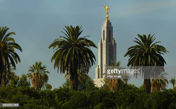 Redlands August 06 2003 ––– A 128 feet high golden statue of Angel Moroni sitting on top of new Mormon Temple now shares the palm trees dotted...