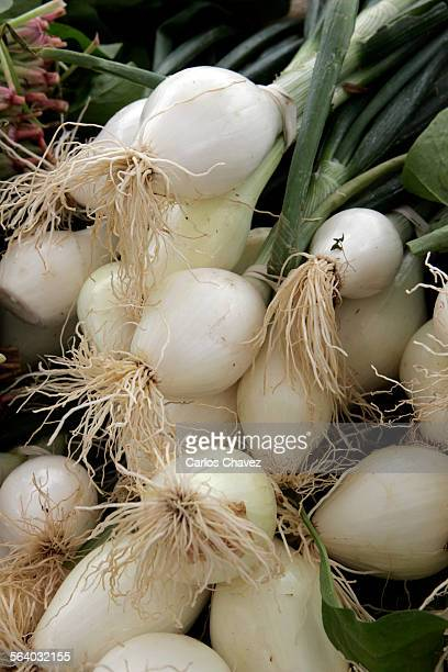 Redondo Beach Farmers Market one only one that overlooks the Pacific Ocean and offers seasonal fruits and vegetables flowers fish and keddle corn...