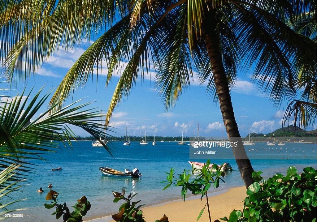 Reduit Beach Rodney Bay St Lucia Caribbean Stock Photo