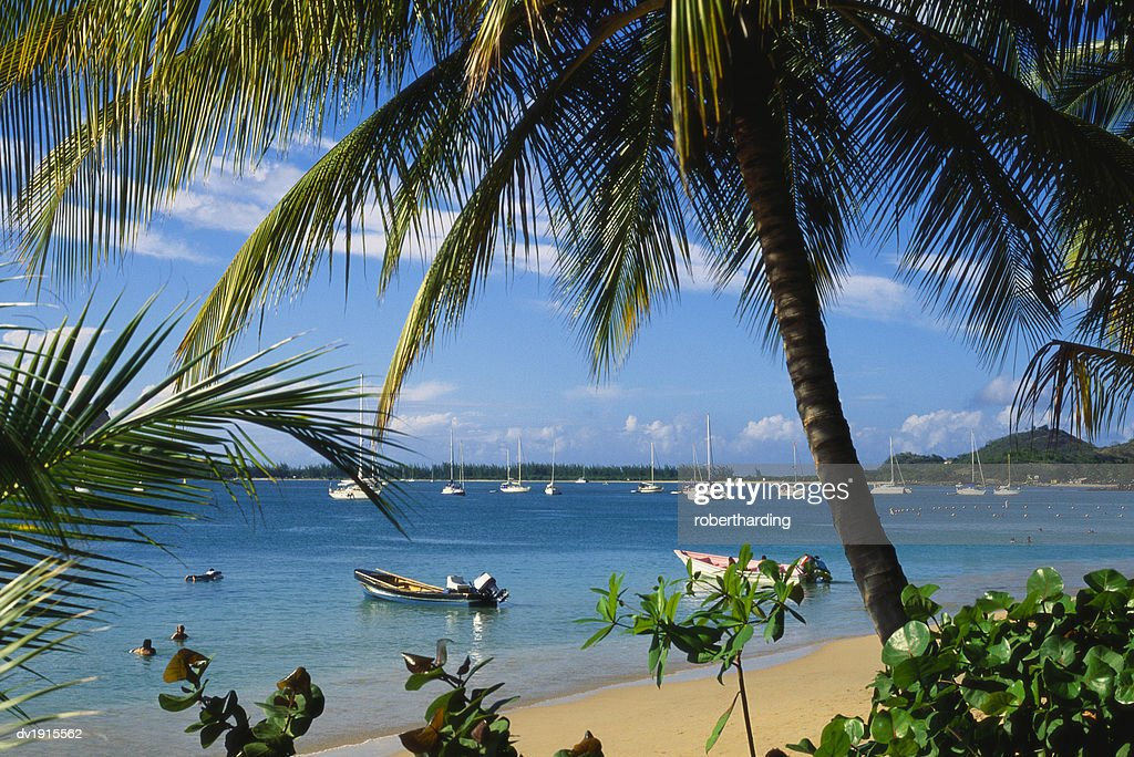 Reduit Beach Rodney Bay St Lucia Caribbean Stock Photo