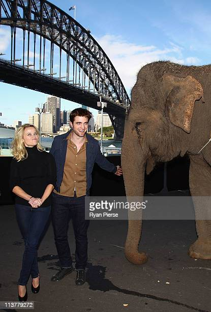 """Reece Witherspoon and Robert Pattinson pose with an Elephant at the """"Water For Elephants"""" press conference at Luna Park on May 6, 2011 in Sydney,..."""