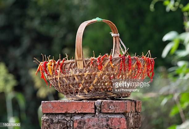 reed basket - andre vogelaere stock pictures, royalty-free photos & images