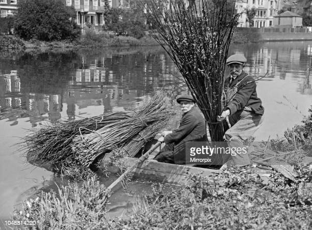 Reed Cutting on the Thames 1st May 1927 Within a stones throw of Chiswick church, not far from Hammersmith Bridge is a small island in the River...