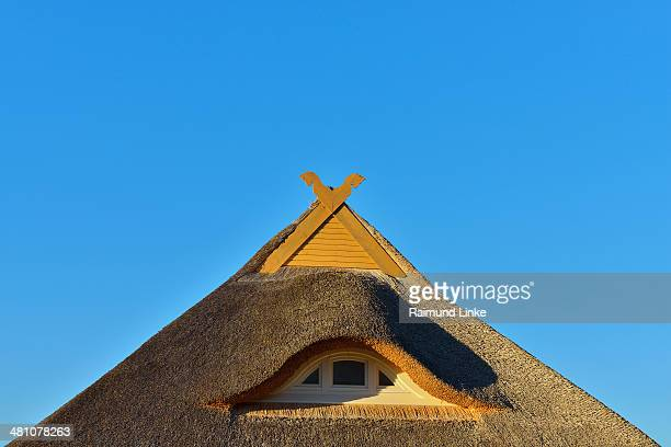 Reed Roof