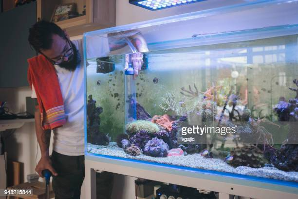 reef tank wartung - aquarium haustierbedarf stock-fotos und bilder