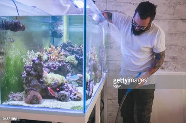 reef tank maintenance - aquarium stock pictures, royalty-free photos & images