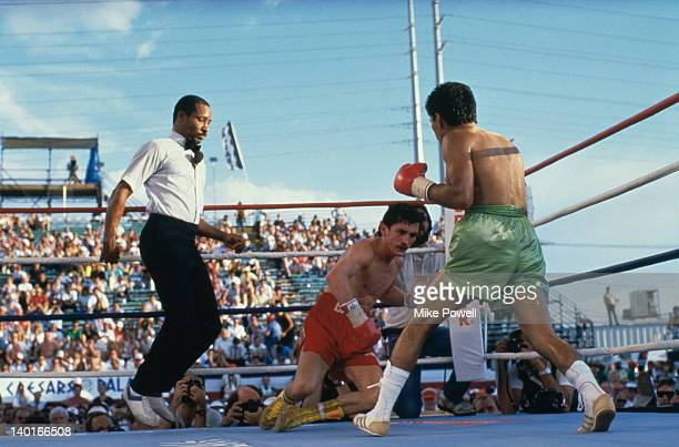 Referee Richard Steele looks on as Irish boxer Barry McGuigan falls during his defence of his WBA world featherweight title against Steve Cruz of the...