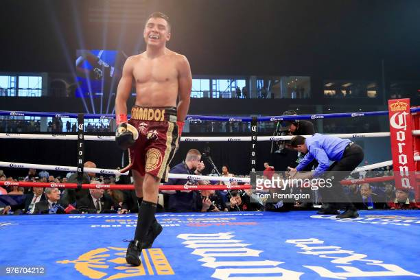 Referee Robert Chapa stops the bout after Javier Fortuna falls from the ring during the fourth round of a Jr Welterweight bout against Adrian...