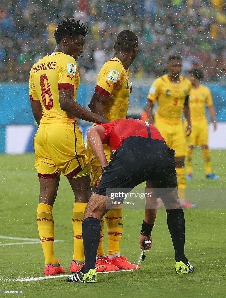 Mexico v Cameroon: Group A - 2014 FIFA World Cup Brazil : News Photo