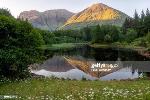 reflected mountain - lake stock pictures, royalty-free photos & images