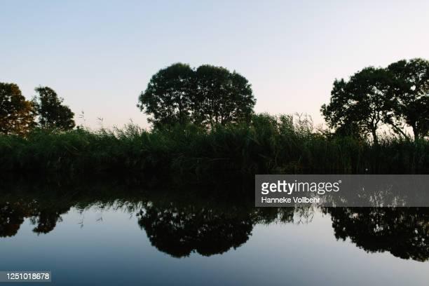 reflectie van bomen in het water tijdens zonsondergang - kamperen stock pictures, royalty-free photos & images