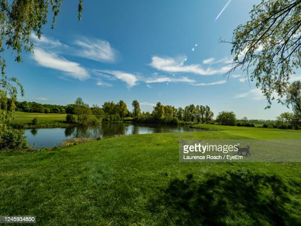 reflecting sunlight on water - northamptonshire stock pictures, royalty-free photos & images