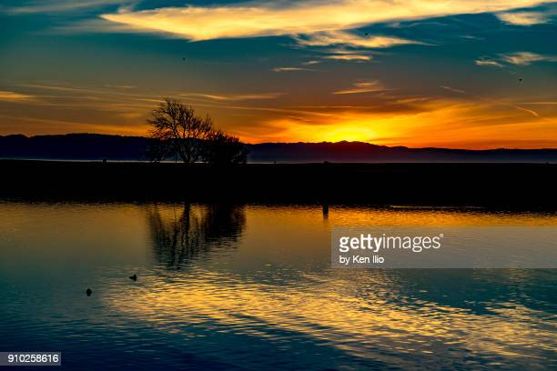 reflection and sunset - ken ilio stock pictures, royalty-free photos & images
