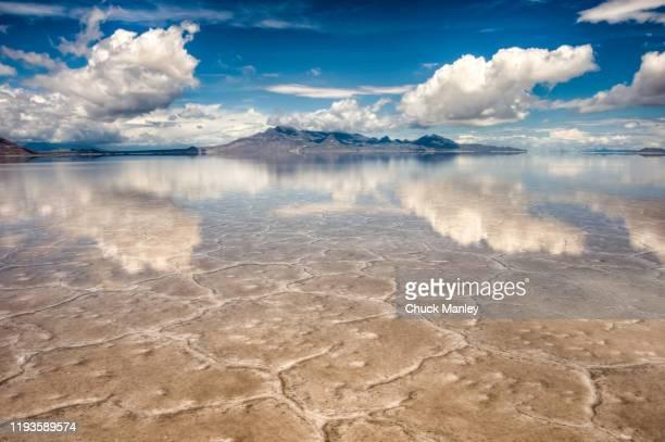 reflection at bonneville salt flats - bonneville salt flats stock pictures, royalty-free photos & images
