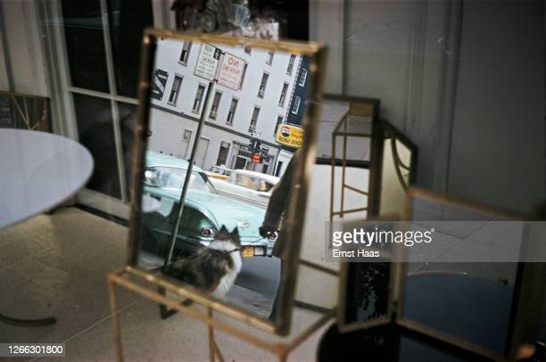 Reflection in a mirror showing a man leading a dog on a street in New York City, 1962.
