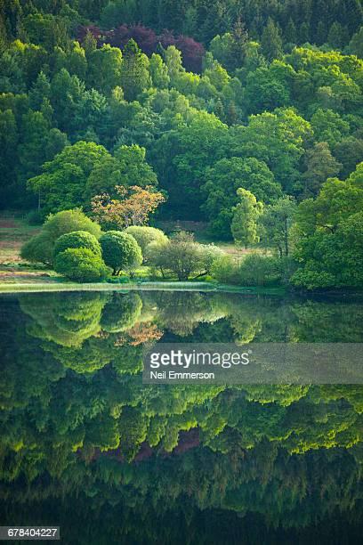 Reflection in Loch Ness, Scotland, United Kingdom, Europe