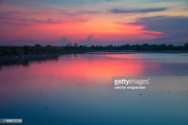 reflection in water of farm against dramatic sky during sunset - thailand stock pictures, royalty-free photos & images