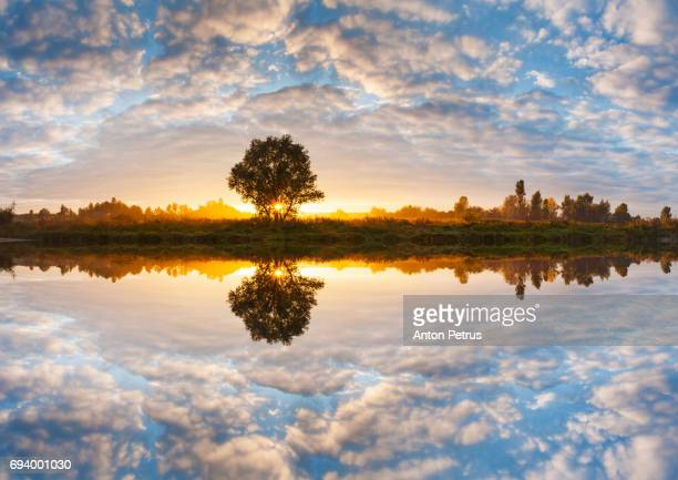 reflection of a beautiful sky at sunrise in the lake - anton petrus panorama of beautiful sunrise stock pictures, royalty-free photos & images