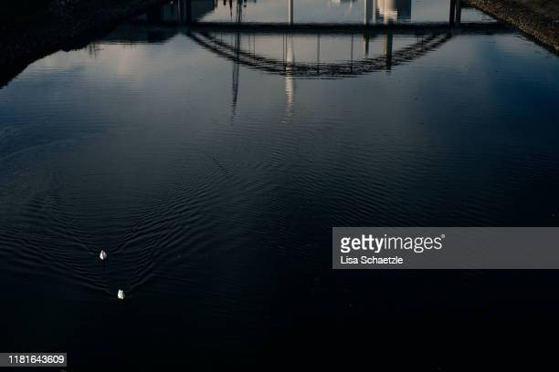reflection of a bridge in the water - lisa strain stock pictures, royalty-free photos & images