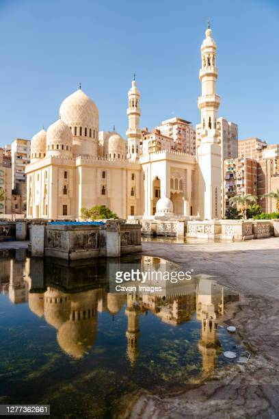 reflection of a mosque in a puddle in alexandria, egypt - alexandria stock pictures, royalty-free photos & images
