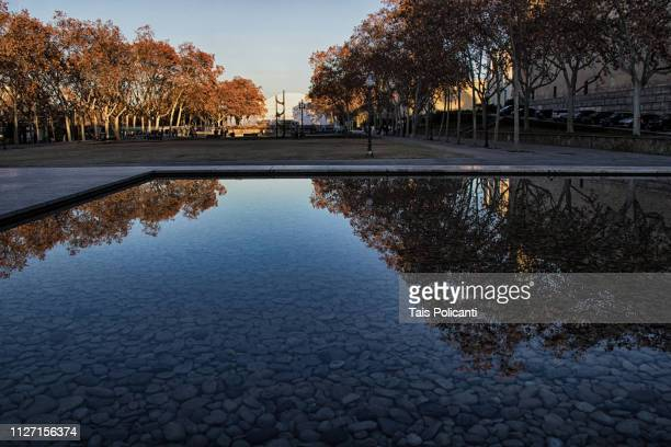 a reflection of a park on the large fountain in the german pavillion at sunset in barcelona, spain - reflection pool stock pictures, royalty-free photos & images
