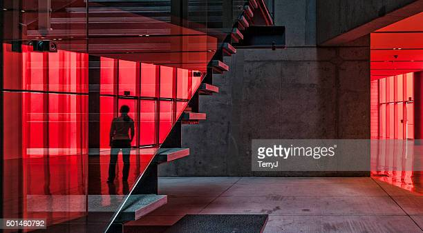 reflection of an individual on staircase at city hall. - steps stock photos and pictures