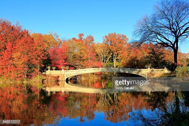 Reflection of autumnal Bow Bridge at sunset
