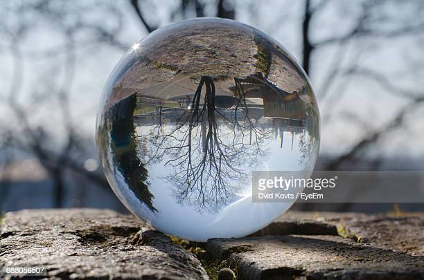 Reflection Of Bare Tree Against Sky On Crystal Ball On Retaining Wall