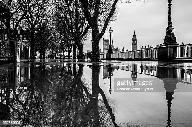 Reflection Of Bare Trees In Puddle Against Big Ben