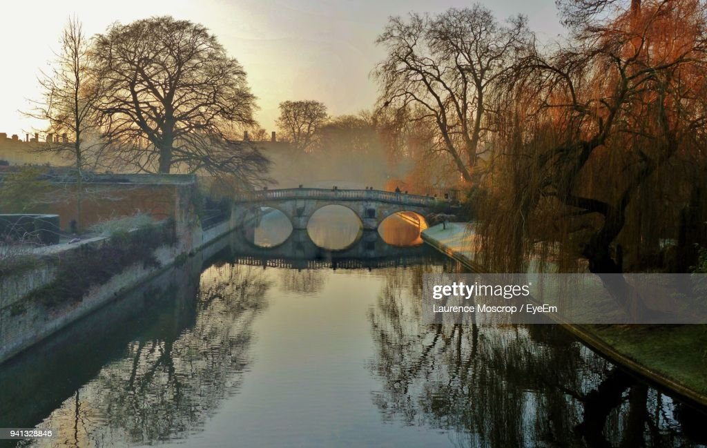 Reflection Of Bare Trees In River Against Sky : Stock Photo