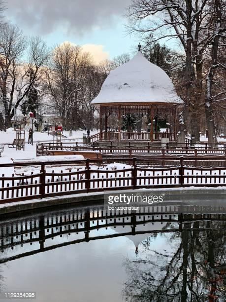 reflection of bare trees on snow covered canal against sky during winter - bortes bildbanksfoton och bilder