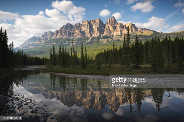 reflection of castle mountain in the bow river, banff national park, alberta, canada - castle mountain stock photos and pictures