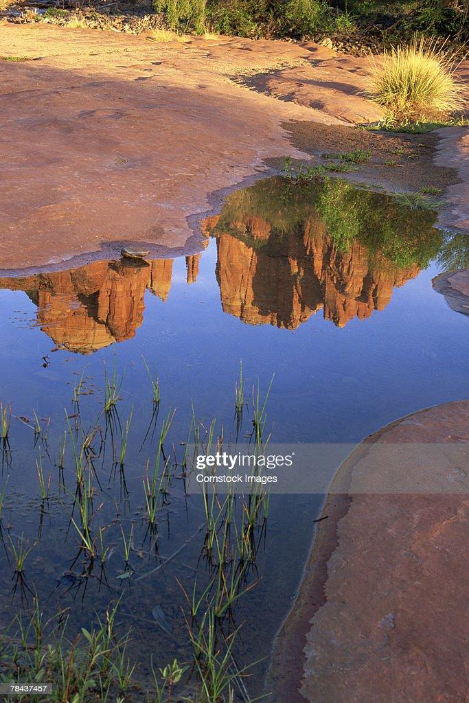 Reflection of Cathedral Rock , Sedona , Arizona : Stockfoto