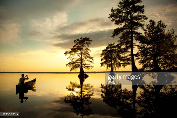 reflection of caucasian boy in canoe near trees in river - bald cypress tree stock photos and pictures
