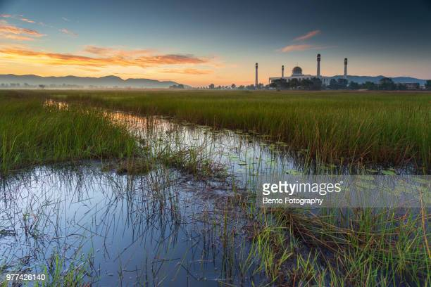 reflection of central mosque of songkhla in the morning - hat yai foto e immagini stock