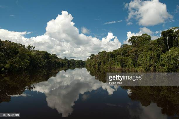 reflection of clouds and trees in amazon river - iquitos stock pictures, royalty-free photos & images