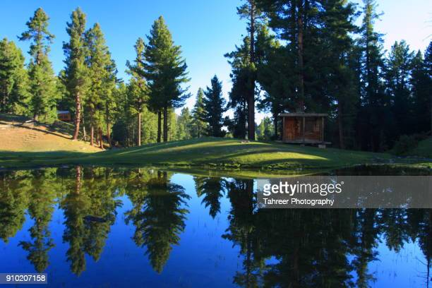 Reflection of Hut, meadows, trees in lake