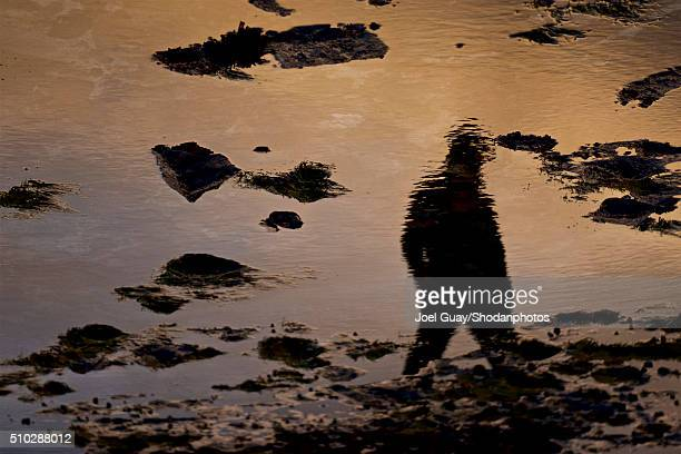 Reflection of man in tide pool