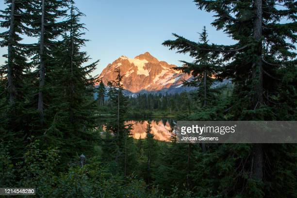 a reflection of mt. baker at dawn across a mountain lake. - bellingham stock pictures, royalty-free photos & images