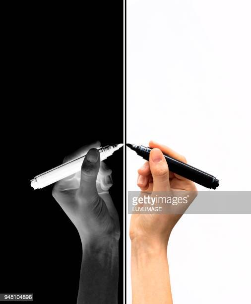 Reflection Of One Hand Drawing Or Writing.
