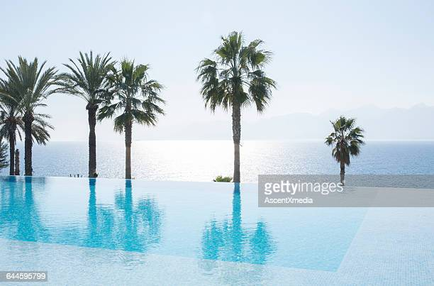 Reflection of palms in infinity pool above sea