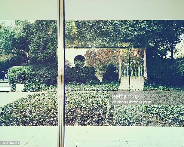 Reflection Of People And Plants On Glass Window
